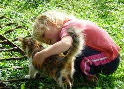 Детям, чьи родители ушли на войну, помогают животные